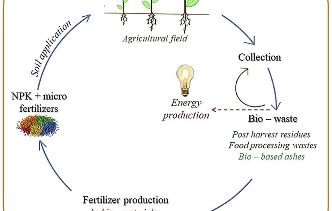 چرا کود دهی برای هر گیاهی حیاتی است؟ + ۵ نوع کود NPK معجزه آسا و دلایل نیاز به آن ها