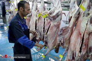 افزایش ۱۵ درصدی قیمت گوشت