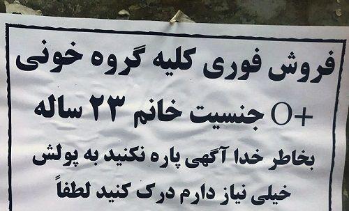 خرید کلیه سالم ایرانی ها به قیمت ۵۰ هزار دلار!